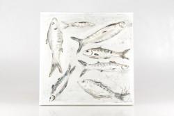 Bild 7 Fische