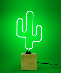 'Kaktus', Neon