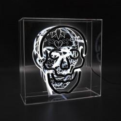 'Totenkopf', Neon